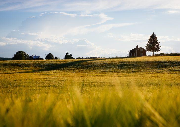 ŽUM kviečia pasinaudoti Europos Sąjungos parama verslo plėtrai, kaimo vietovėse veikiančioms įmonėms